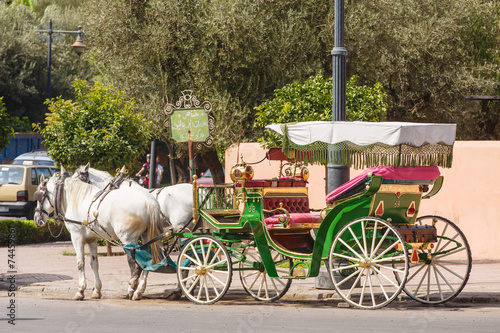 Canvas Prints Horses Marokko, Marrakesh, rijtuig