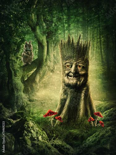 Magic stump