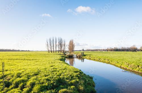 Polder landscape in autumnal sunlight Fototapeta