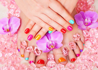 Fototapeta Beautiful manicure and pedicure