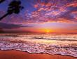 canvas print picture - Tropical beach