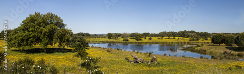 Beautiful spring landscape view of the Alentejo Canvas Print