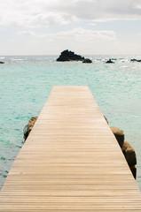 Panel SzklanyLobos Island pier