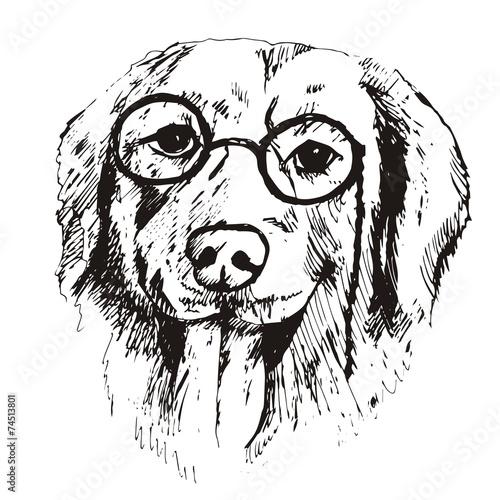Photo sur Toile Croquis dessinés à la main des animaux собака