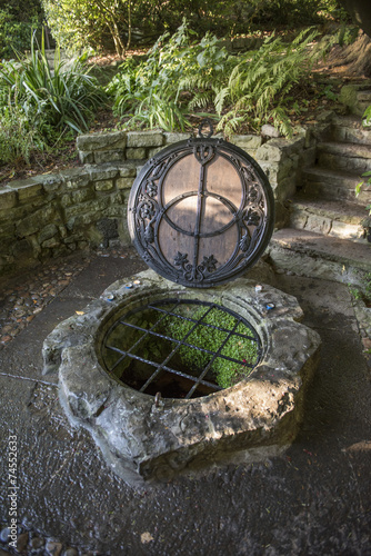 Fotografie, Obraz  Chalice Well