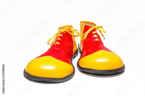 Stampa su Tela Clown Schuhe