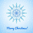 Beautiful vector large snowflake