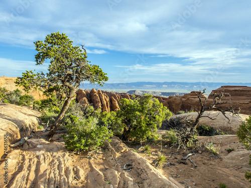 Fotobehang Natuur Park scenic landscape at arches national park