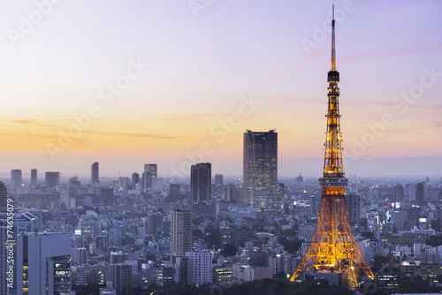 Poster Tokyo Tokyo Tower, Japan
