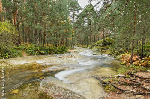 Foto op Canvas Weg in bos river and forest on a rainy day in Segovia, Spain.
