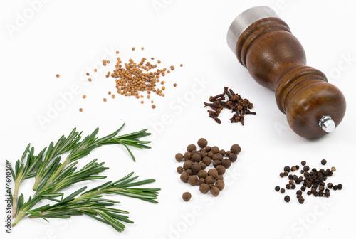 Fotografía  Spices on white background