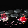 spa still life of zen stones with drops, orchid cambria flower a