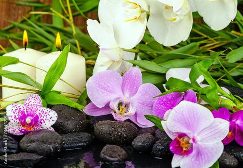 Wellness Orchideen Mit Steinen Bambus Und Kerzenlicht Buy