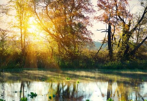 Fotobehang Zwavel geel Bright sunrise over river