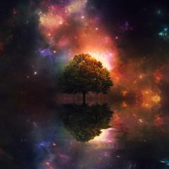 FototapetaNight sky and tree