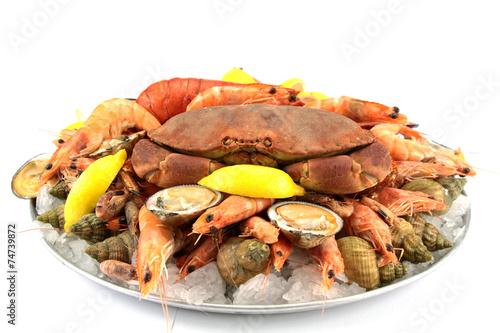 Foto plateau de fruits de mer