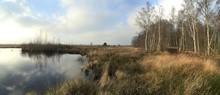 Moorgebiet Als Panorama