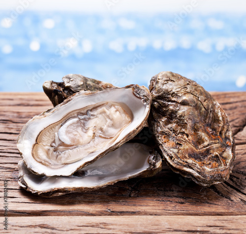 Raw oyster on wood. Sea at the background. Canvas Print
