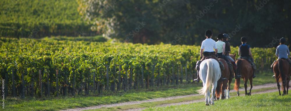 Fototapety, obrazy: Equitation balade - Riding