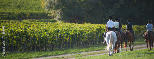 Fototapeta Equitation balade - Riding obraz