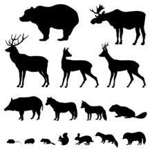 Animals Of European Forest. Icon Set Of Silhouette.