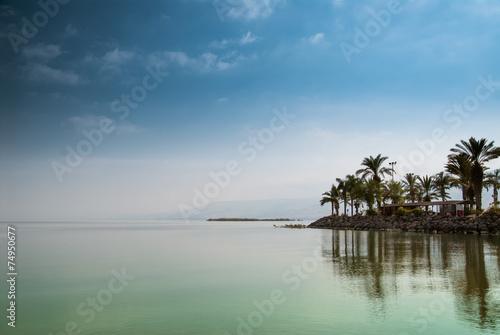 Valokuvatapetti Kinneret, Galilee sea, Israel, Tiberias lake with palms
