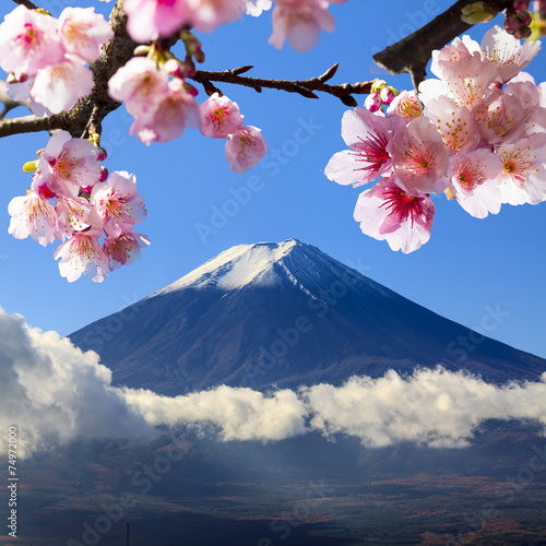 Fotomural the sacred mountain of Fuji in the background of blue sky at Jap