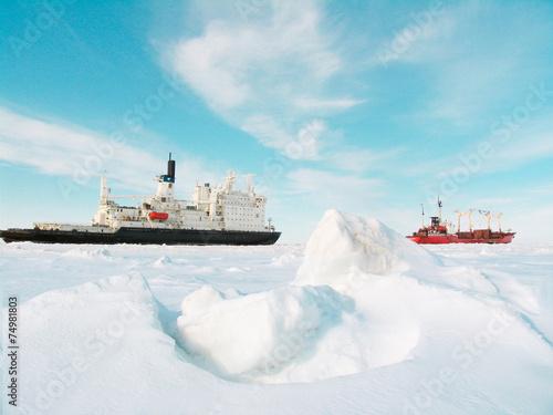 Plakat Lodowce i góry lodowe
