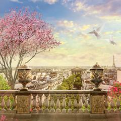 Fototapeta Paryż panorama of Paris