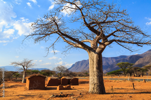 Staande foto Afrika House surrounded by baobab trees in Africa