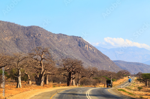 Staande foto Afrika Road through the baobab forest valley in Tanzania