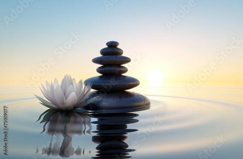 Montage in der Fensternische Lotosblume Weiße Lotusblüte und Steine im Wasser