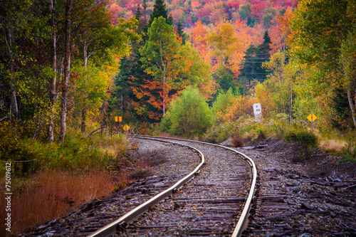 Fotografie, Obraz  Autumn color along a railroad track in White Mountain National F
