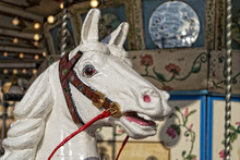 Old Carousel Horse