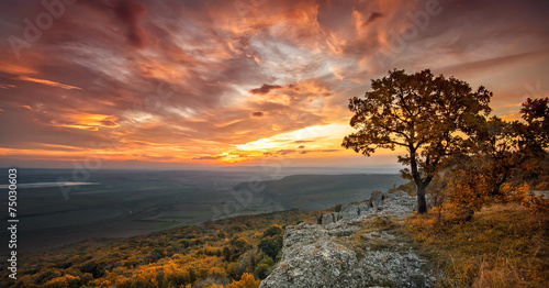 Photo sur Toile Marron chocolat Magnificent view from a hill with an autumn forest at sunset