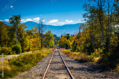 Deurstickers Spoorlijn Railroad track and distant mountains seen in White Mountain Nati