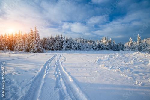 Foto  the winter road