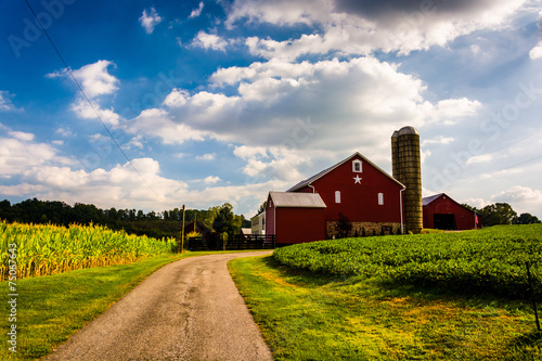 Obraz Driveway and red barn in rural York County, Pennsylvania. - fototapety do salonu