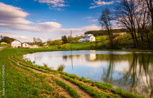 Fotografie, Obraz  Pond in rural York County, Pennsylvania.
