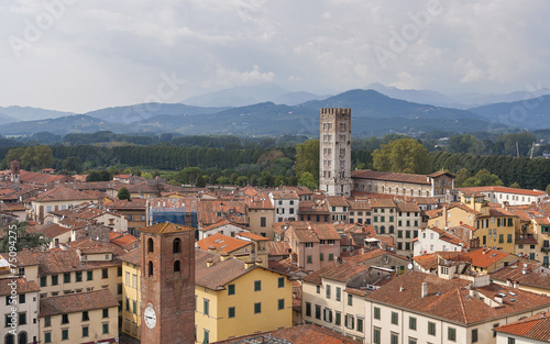 Fototapety, obrazy: Lucca cityscape from the Guinigi tower, Italy