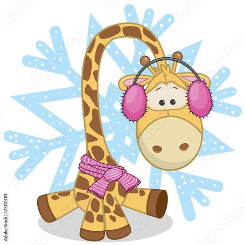 Photo  Giraffe in a fur headphones