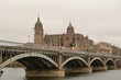 Vistas desde el puente de Hierro de Salamanca