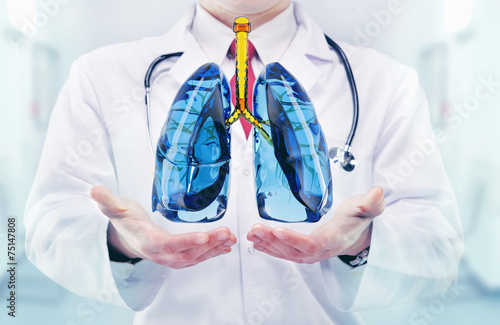 Doctor vith lungs in hands in a hospital Poster