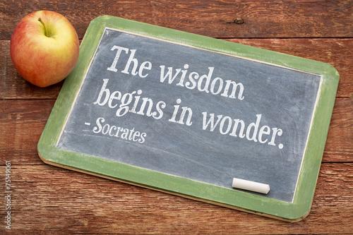 Fotografía  Wisdom begins in wonder
