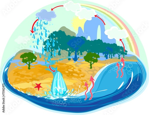 Fotografie, Obraz  Water cycle in nature