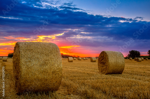 Poster Texas End of day over field with hay bale