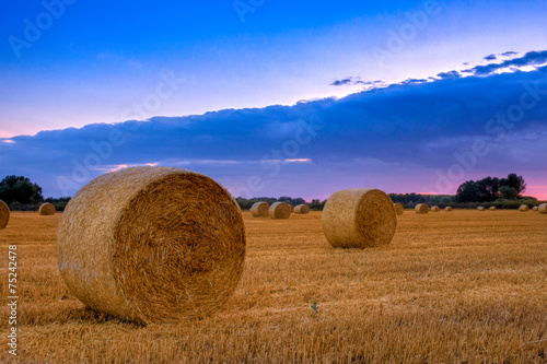 Foto op Aluminium Blauw End of day over field with hay bale