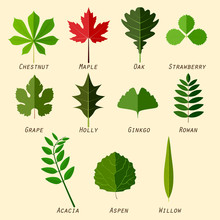 Simple Silhouettes Of Leaves W...