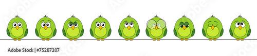 Fotografía funny birds #3