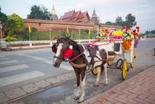 Horse Carriage In Temple Phrat...
